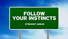 Instinct spot on